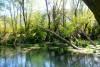 fiume tirino pe 18 20150105 1897857904